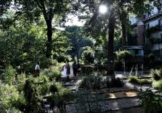 Visita all'Orto Botanico Brera
